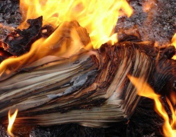 nothing-like-some-birth-records-to-get-a-good-fire-going