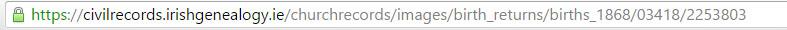 Image in browser address bar